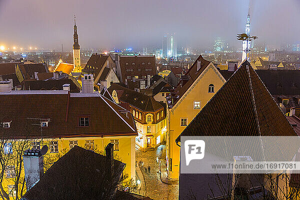 View of Old Town at dusk  from Toompea Hill  Tallinn  Estonia