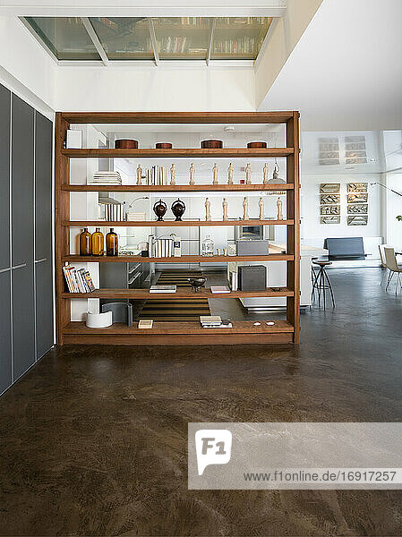 Shelving unit in open plan apartment.