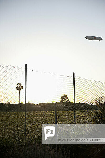 Blimp flying over park with palm trees and wire fence in foreground.