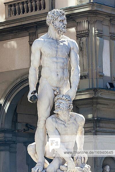Statue des Neptun  Piazza Della Signora  Florenz  Italien