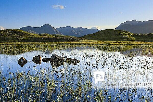 Rannoch Moor  Schottland  Großbritannien  Europa