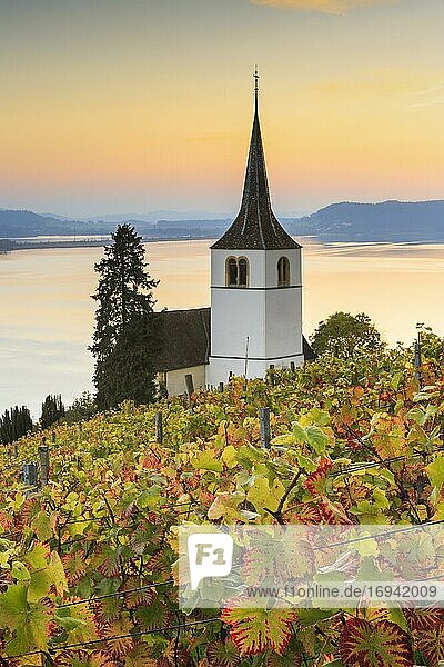 Ligerz on Lake Biel  Bern  Switzerland  Europe Ligerz on Lake Biel, Bern, Switzerland, Europe