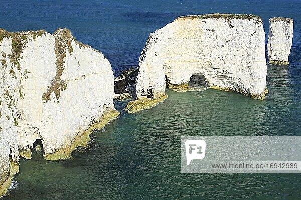 Jurassic Coast  Süd-England  Großbritannien  Europa