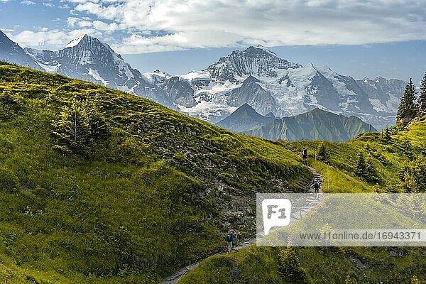 Wanderer auf Wanderweg  schneebedckten Berggipfel  Eiger  Mönch  Jungfraujoch und Jungfrau  Gletscher Jungfraufirn  Jungfrauregion  Grindelwald  Bern  Schweiz  Europa