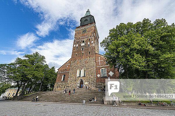 Dom zu Turku  Turku  Finnland  Europa