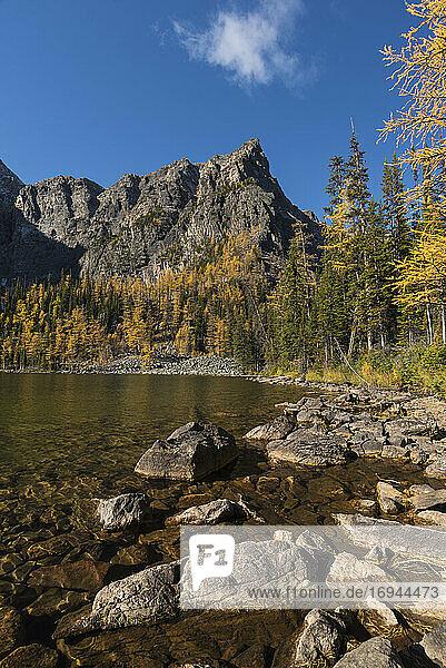 Arnika-See im Herbst mit Lärchen und Bergen  Banff National Park  UNESCO Weltkulturerbe  Alberta  Kanadische Rockies  Kanada  Nordamerika