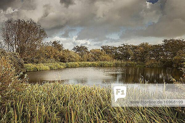Kleiner Teich in Braderup  einem Ortsteil von Wenningstedt auf Sylt. Darüber ein herbstlicher Wolkenhimmel. Nur wenige Urlauber kennen diesen Ort.