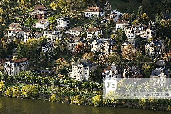 Germany Baden-Wurttemberg  Heidelberg  Villas on bank of Neckar river