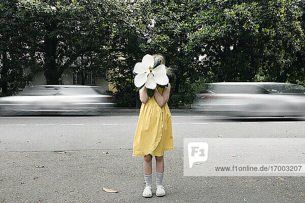 Girl wearing yellow dress hiding her face behind oversized white magnolia blossom