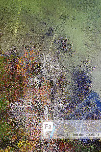 Drone view of boats left on lakeshore in autumn
