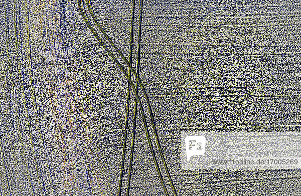 Drone view of tire tracks across frosted field in winter