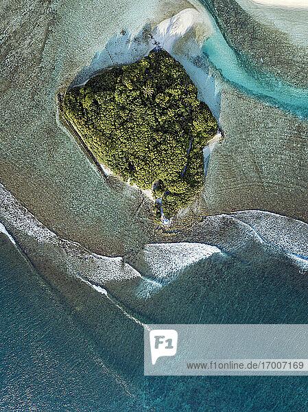 Maldives  Kaafu Atoll  Aerial view of small grove on Huraa island
