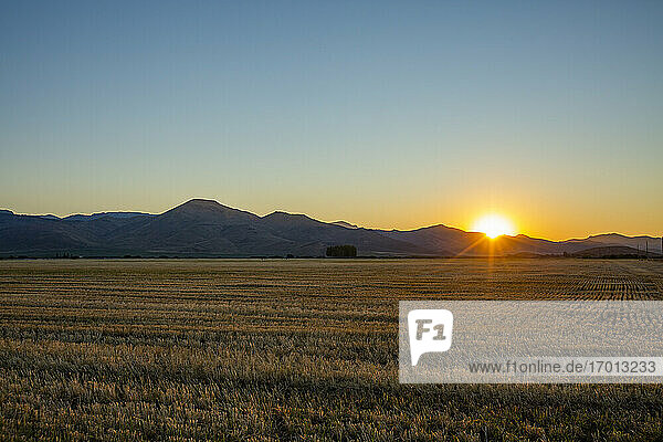 USA  Idaho  Bellevue  Landwirtschaftliches Feld bei Sonnenuntergang