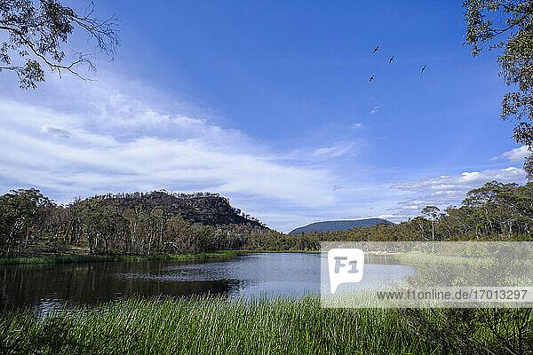 Australien  Neusüdwale  Dunns Sumpf  See im Ganguddy-Dunns Sumpf