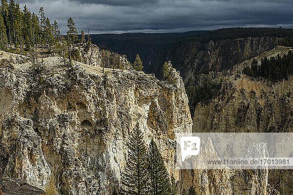 USA  Wyoming  Yellowstone National Park  Klippen des Grand Canyon im Yellowstone National Park
