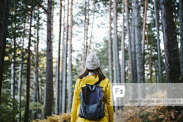 Woman in yellow raincoat walking in forest in Autumn