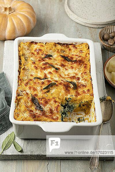 Kürbislasagne mit Ricotta  Spinat und Mozzarella