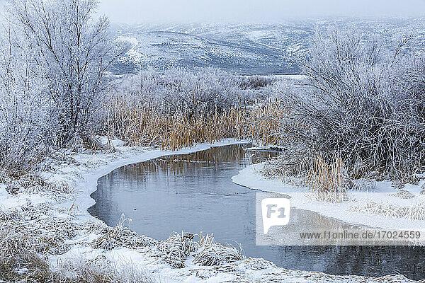 USA  Idaho  Bellevue  Verschneite Winterlandschaft mit Bach zwischen Bäumen