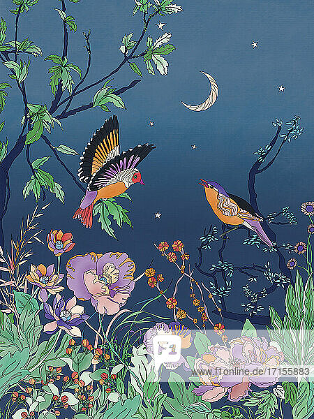 Hübsche Vögel und Blumen gegen den Nachthimmel