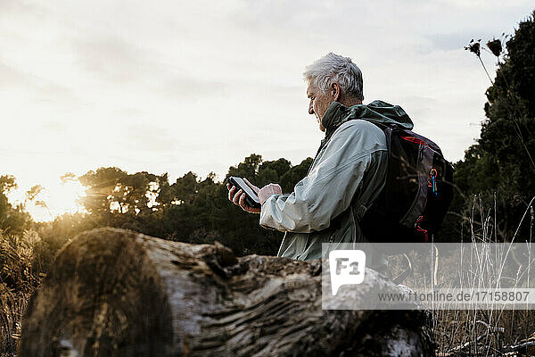 Senior man sitting on wooden log while using smart phone during sunset