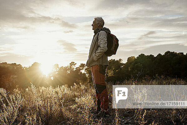 Senior male hiker with hands in pockets enjoying sunset view at agricultural field