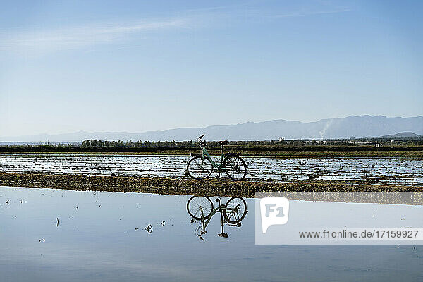 Bicycle with reflection at rice paddy on Ebro's Delta against blue sky