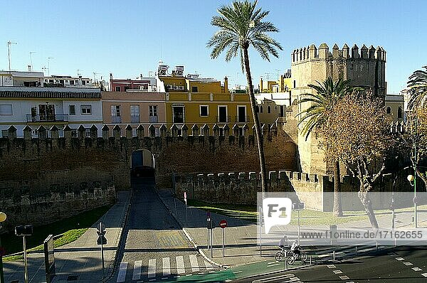 Sevilla (Spain). Remains of the walls of the city of Seville.