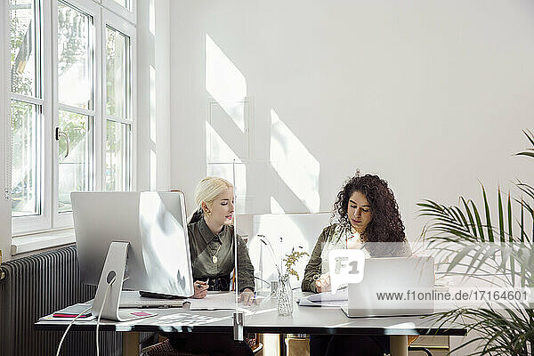 Women working together in office with protective screen partition