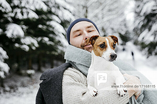 Man looking at Jack Russell Terrier dog during winter