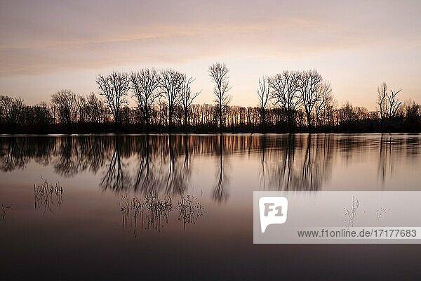 Sonnenaufgang am Altrhein mit Naturschutzgebiet Bislicher Insel  Xanten  Niederrhein  Ruhrgebiet  Nordrhein-Westfalen  Deutschland  Europa