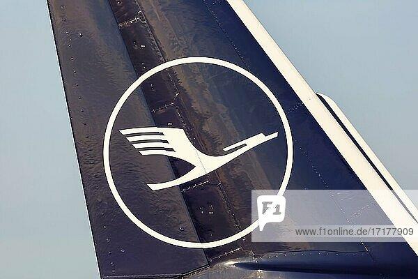 Ein Airbus Leitwerk der Lufthansa mit dem Kranich Logo auf dem Flughafen Frankfurt  Deutschland  Europa