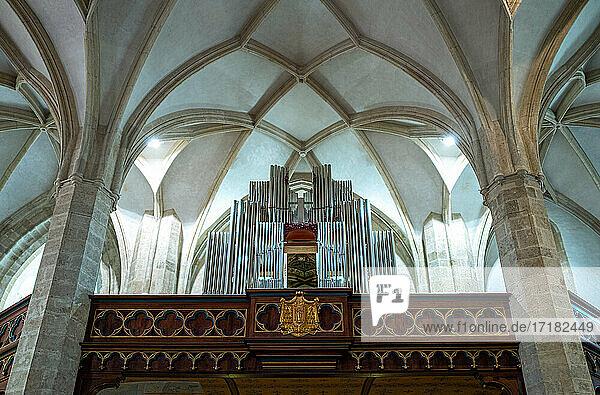 Bratislava  Slowakei  Die Orgel unter der verzierten Decke der St. Martin Kathedrale