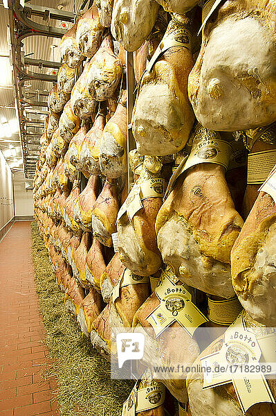 Europe  Italy  Bergamo. IBS sausage factory in Azzano S. Paul produces hams Ca del Botto in the Ardesio factory in Val Seriana. The seasoning is flavored with hay.
