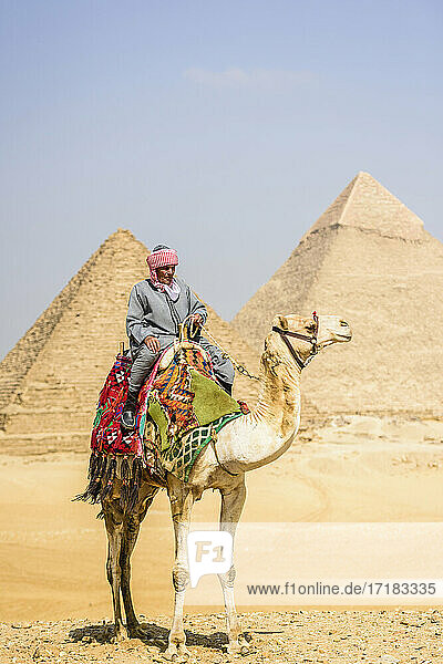 Tombs of the pharaohs Khufu  Khafre  and Menkaure  the pyramids  a guide riding a camel