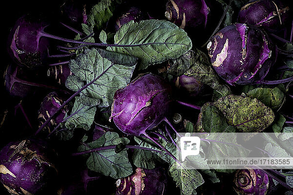High angle close up of freshly picked kohlrabi.