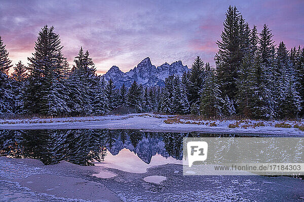 Evening light  reflection of Teton Range in icy pond  Schwabacher's Landing  Grand Teton National Park  Wyoming  United States of America  North America
