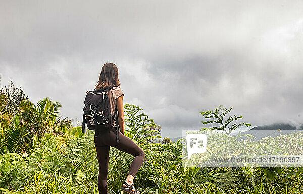 Hiker in El Yunque Rainforest  Puerto Rico