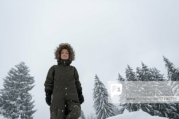 son goes for a walk in the winter forest