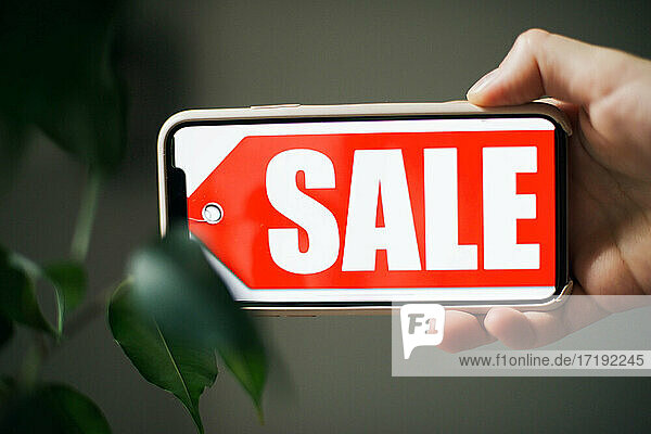 Sign With Sale Text  season concept