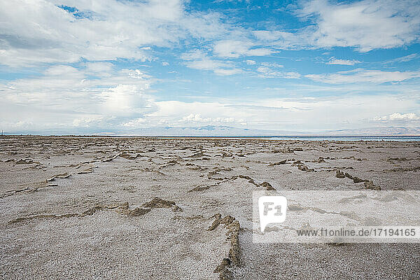 crusty desert shore of Salton Sea in California