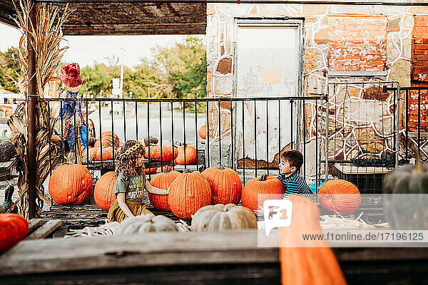 Brother and sister sitting surrounded by pumpkins at outdoor market