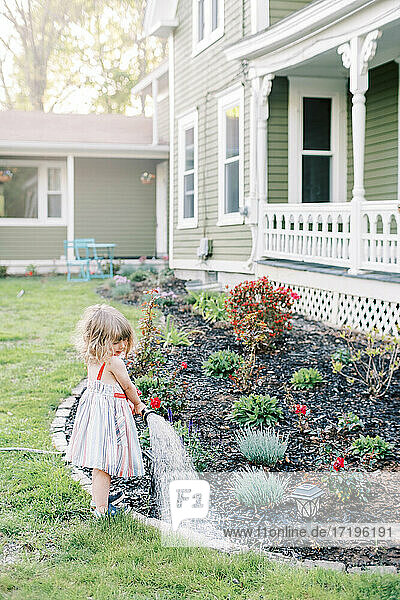 Little toddler girl in summer dress watering blooming garden in spring