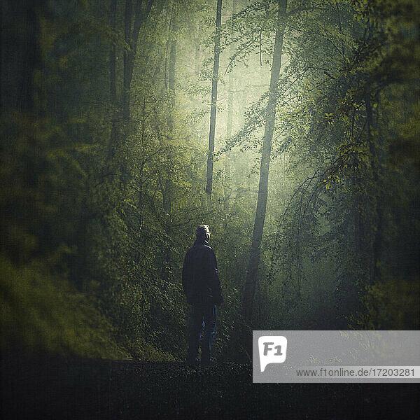 Deutschland  Wuppertal  Mann im nebligen Wald