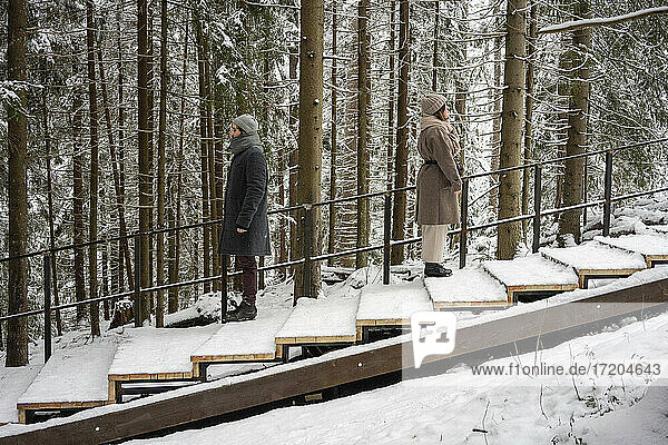 Couple standing with distance on steps in forest
