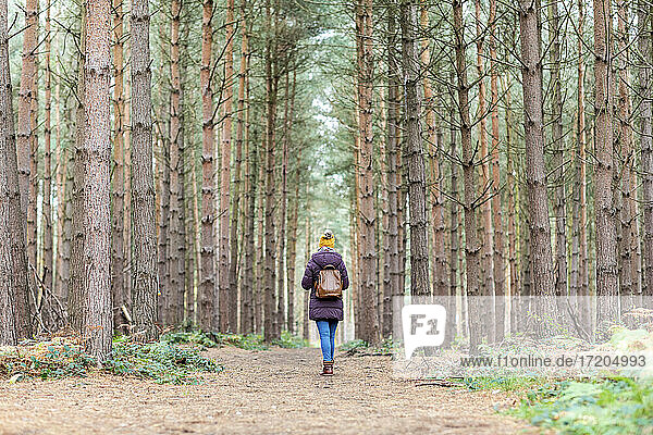 Frau mit Rucksack inmitten von Bäumen im Wald