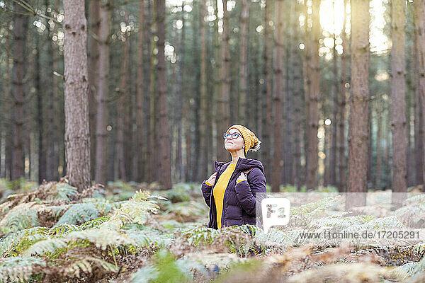 Frau schaut nach oben  während sie im Herbst den Wald erkundet