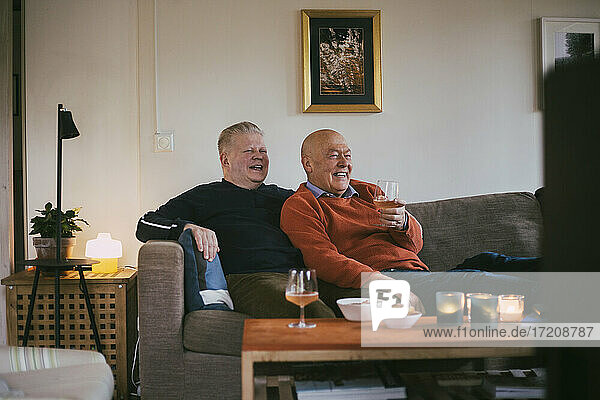 Smiling homosexual couple with wineglass watching television at home