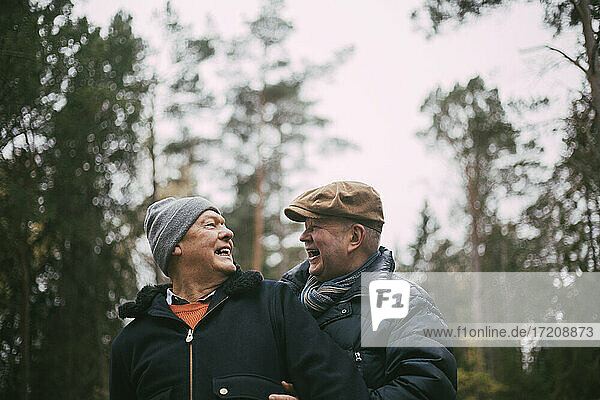 Cheerful homosexual couple in forest
