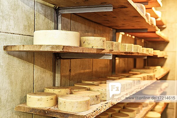 Suedtirol  Bozen  Ultental  Ulten  Kaeseherstellung  Bauer  Bergbauer Cheese making  farmer  mountain farmer  Val d'Ultimo  Ultental  Italy  South Tyrol  Bolzano