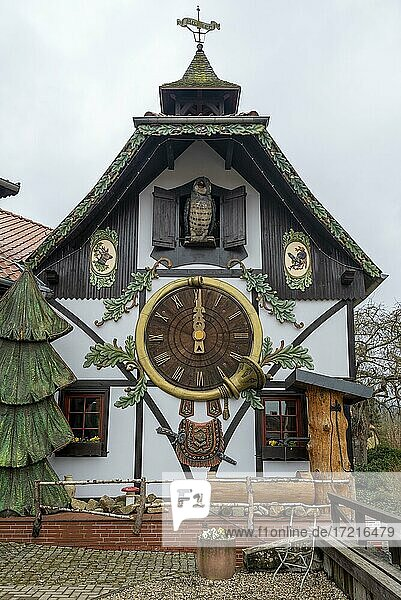 Largest cuckoo clock in the world  Harz Clock Museum  Gernrode  Harz Mountains  Saxony-Anhalt  Germany  Europe Largest cuckoo clock in the world, Harz Clock Museum, Gernrode, Harz Mountains, Saxony-Anhalt, Germany, Europe